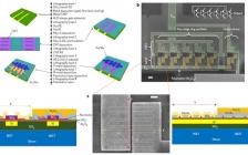 Nature子刊:将溶液处理的自组织碳纳米管用于高速逻辑集成电路
