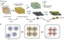 """北京大学""""极端光学创新研究团队"""":在钙钛矿光伏材料的生长机理原位研究方面取得新进展"""