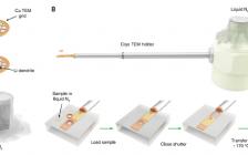 崔屹最新science:玩转冷冻电镜——揭密电池材料和界面原子结构
