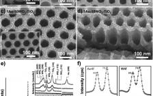 Patrik Schmuki Adv. Funct. Mater.:Au/WO3/TiO2纳米阵列增强光催化产氢性能