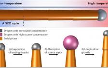 Nano. Lett.:单晶硅纳米线确实可以长到厘米长度!