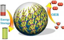 余颖Sci. Bull.:通过多维结构纳米复合材料的设计实现其在能源存储和电催化领域的应用