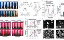 Nat. Mater.:定量自组装预测产生有针对性的纳米药物