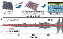 北科大范丽珍ACS AMI:固态锂电池用三维双相导锂复合固体电解质