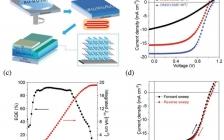 大连化学物理研究所刘生忠研究员团队 Adv. Mater:  高性能二维钙钛矿太阳电池的相变控制