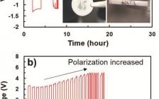 阿肯色大学&华盛顿大学Energy Environ. Sci. :固态电池中,固态电解质解决锂枝晶问题