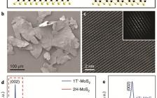 南洋理工大学Nat. Chem. :高纯相1T′-MoS2晶体相和1T′-MoSe2层状晶体相