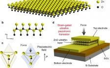 中科院北京纳米能源所王中林团队ACS Nano:超短沟道的压电电子学晶体管