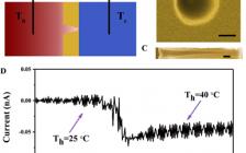 中科院理化所AEM:新型仿生热电转换体系——通过离子流定向通过锥形纳米通道阵列收集低品位热能