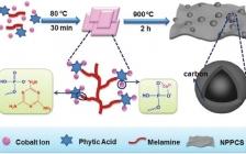Adv. Mater. : 一步构筑氮磷共掺杂多孔碳片/CoP复合材料及其增强储锂/钾性能