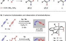 ACS Catal. : 理论计算助力铁(II)双(乙炔化物)配合物催化末端炔烃氢官能化反应