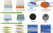 Adv Energy Mater:超轻三维炭集流体:构建稳定高能量密度全炭双离子电池