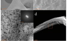 Adv. Mater. 一种提高水裂解电催化剂性能的通用设计策略!