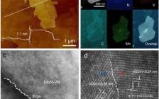 乔世璋阿德莱德大学和王海辉华南理工大学:2D MoN-VN异质结构控制多硫化物用于高效锂硫电池