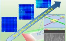 王中林、翟俊宜Nano Energy: 用于面内应变映射的柔性Li掺杂ZnO压电晶体管阵列