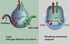 """斯坦福大学崔屹团队Joule:一种会""""呼吸""""的OER和ORR催化剂"""