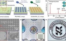 中科院纳米能源所&湖南大学:实现基于图案化钙钛矿薄膜柔性实时光电探测与阵列成像