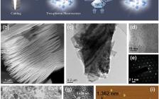 郑州大学等Adv. Sci. 双光子荧光白光MXene量子点