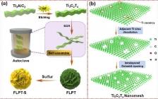 王瑞虎&杨植 ACS Nano : 花状多孔Ti3C2Tx基电极同步提升锂硫电池面积和体积容量