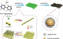 刘小鹤&马仁志Small : MOF衍生二维无支撑氮掺杂Ni-Ni3S2@C纳米片及其增强OER性能