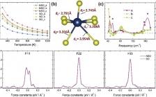 福建物构所庄巍&吴天敏Nano Energy : 自旋轨道相互作用与声子非谐性的耦合对SnSe热电性能的影响