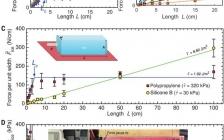 今日Science最新除冰技术:用于有效大规模除冰的低界面韧性材料