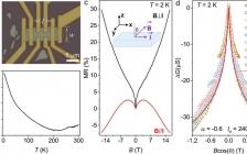 Nano Lett. : 拓扑绝缘体BiSbTeSe2中拓扑表面态反弱局域化效应的定量分析