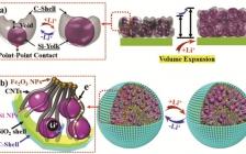 格里菲斯大学、中科大赵惠军Angew:高导电性和高振实密度的蛋黄-壳结构硅负极在锂电全电池中的应用