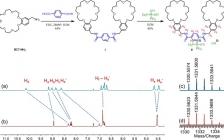 湖南大学J. Am. Chem. Soc.: 通过水参与氢键形成的超分子聚合物粘合剂