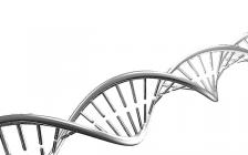 读书笔记(Nature Communications) :DNA电催化剂你可曾听过?