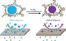 国家纳米科学中心&天津大学Adv. Funct. Mater.:控制共轭微孔聚合物膜在高效有机溶剂纳滤中的选择性