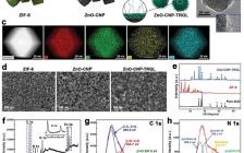 四川大学 Adv. Funct. Mater.: 尺寸可变的MOF基纳米碳材料用于局部化学光热杀菌和伤口消毒