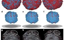 今日最新Nature: 从四个维度观测晶体成核