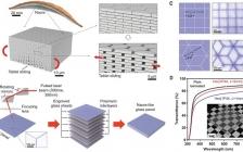 最新Science报道:耐冲击的珍珠层状透明材料