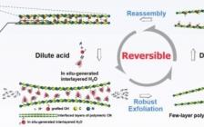 叶金花AFM:可逆剥离重组的碳氮聚合物应用于高效光催化
