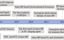 Adv. Funct. Mater.综述:黑磷在生物医学和生物传感的研究进展