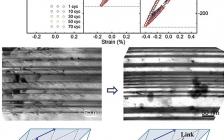 金属所卢磊研究员Acta Materialia.: 预变形引起择优取向纳米孪晶金属非对称循环响应