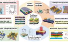 深圳大学周晔Adv. Funct. Mater.:双极型晶体管以及其功能应用的最新进展