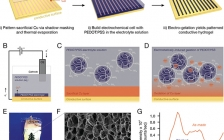 斯坦福大学鲍哲南Adv. Mater:用于图案化导电PEDOT:PSS水凝胶的电化学凝胶化方法