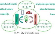 郑州大学付永柱课题组Acc. Chem. Res.:有机硫化物:一类新兴的可充电锂电池正极材料