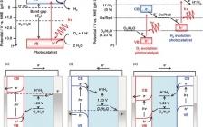 Angew. 综述: 基于钙钛矿氧化物的电极用于高性能光电化学水分解