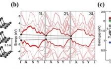 深圳大学郭志男、张晗Adv. Funct. Mater.: Phosphorene稳定性和钝化技术在下一代器件应用中的最新进展