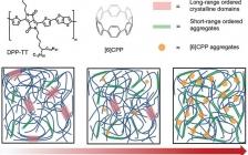 鲍哲南团队 Adv. Mater.: 共轭碳环状纳米环作为本征可拉伸半导体聚合物的添加剂