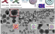 南师大刘犇ACS Nano: 用于高效电催化的三元PdBP合金介孔纳米球