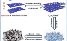 广东工业大学J Power Sources:锚定在氮掺杂MXene纳米片的高分散氧化铁纳米颗粒作为高性能锂离子电池负极材料