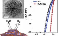南洋理工大学&香港城市大学张华团队Nano Energy:用多层纳米片合成RuNi合金纳米结构,实现高效电催化析氢