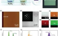 南京大学 AFM: 基于二维Bi2O2Se纳米片的高灵敏和超宽带光电晶体管