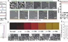 Adv. Energ. Mater.综述:金属卤化物钙钛矿太阳能电池添加剂研究进展