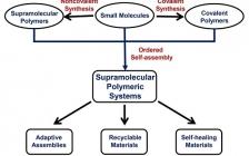 Prog. Poly. Sci.:听张希院士谈超分子聚合物化学的发展及未来