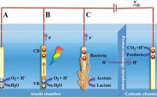 Adv. Mater.综述: 电催化CO2还原的电极材料工程:能量输入和转化效率